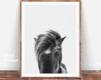 horse print black and white wilderness wall art horse photography equestrian art - Horse Decor