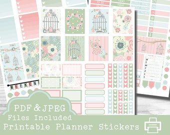 Spring Birdcages Printable Planner Stickers,  Erin Condren Planner Stickers, Birdcage Stickers, Spring Stickers, Printable Stickers