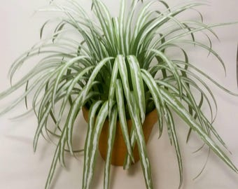 "Artifical Spider Plant in 6"" Terra Cotta Flower Pot"