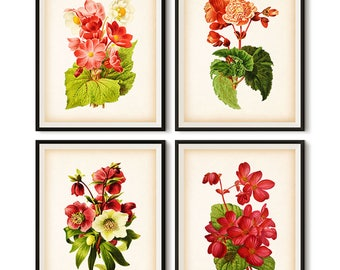 Flower wall art, Floral art, Floral print, Printable floral art prints, Download prints, Download print sets, Set of 4 prints, Art, JPG