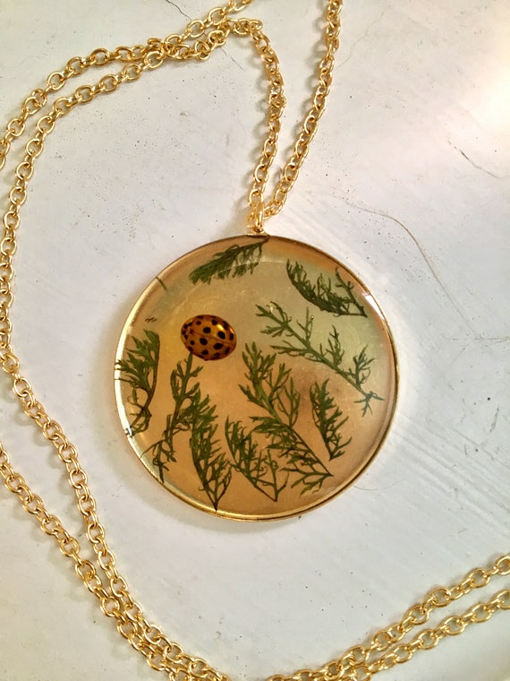 Real ladybug and yarrow leaf brass circle necklace