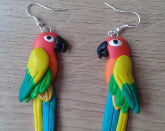 Parrot earrings Sun conure -  handmade fimo earrings polymer clay