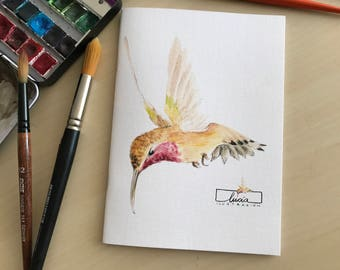 "Illustrated book ""Hummingbird"""