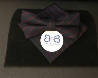 Striped Bow Tie & Pocket Square Set