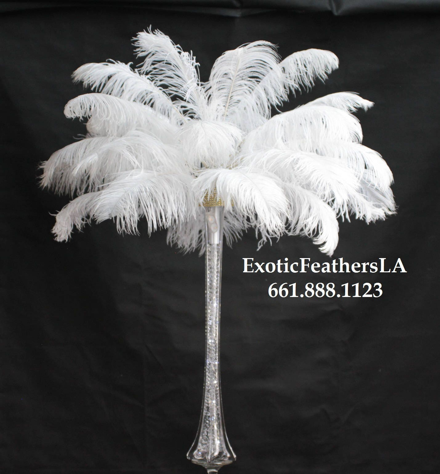 Special sale u s a pcs white ostrich feathers