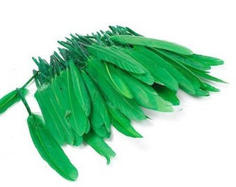10 green goose feathers