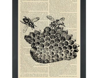 Two Bees in Honeycomb Dictionary Prints Page Turner