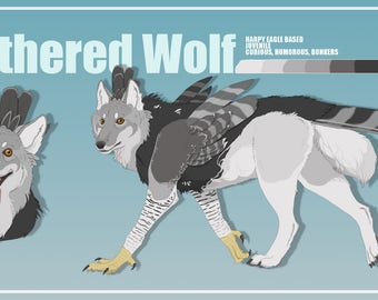 Character design feathered wolf