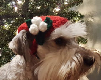 Valentines Day Dog Hat, Hats for Cats, Cat Hat, Pet Hat, Crocheted Cat Hat, Flower Hat, Cat Clothes, Small Dog Clothes, Small Dog Costume