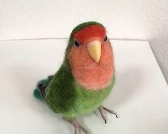 Peach-faced Lovebird, life-size wool felt, budgies parakeets Parrot cockatiel no.5