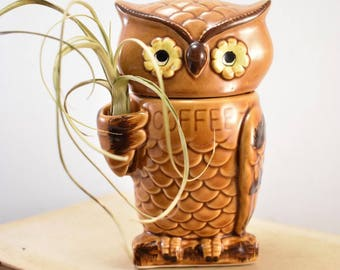 Small Ceramic Owl Coffee Canister/Retro Kitsch/Air Plant Holder/Storage Container