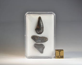 Meteorite - Sikhote Alin - Iron IIAB - fell 1947 in Russia - set of 3 individuals - amazing shaped specimens - 10.1 g