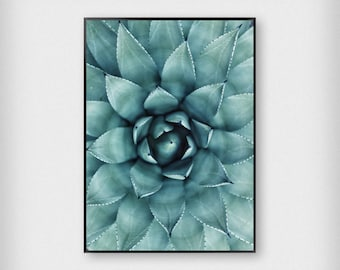 Plant Close Up Print | Botanical | Green | Tropical - Leaves - Poster