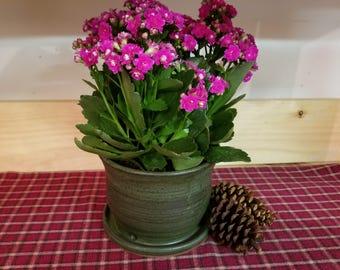 Slate green pottery planter