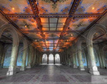 Minton Tiles at Bethesda Fountain Terrace, Central Park, New York, Print Photograph, Wall Decor