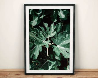 Leaves Print, Leaves Poster, Leaves Wall Art, Plants Wall Decor, Plants Print, Plants Poster, Plants Wall Art, Instant Download
