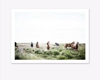 Horse Print, Landscape Print, Scandinavian Print, Nature Phtotography, Animal Prints, Nordic Print, Scandi Home Decor, Horse Art, Scandi Art