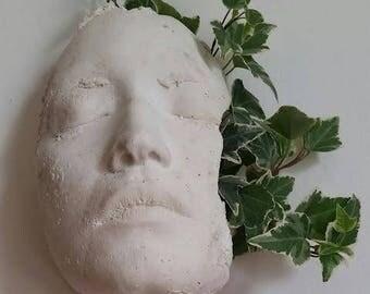 Face Planter/ Air Plant Holder