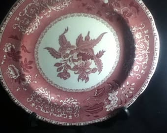 spode copeland  pink camiila vintage possibly antique