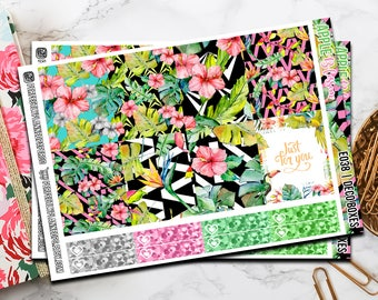 038   Apple Blossom // Erin Condren Vertical  and Happy Planner Classic Weekly Planner stickers