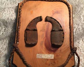 Oxen Shoes