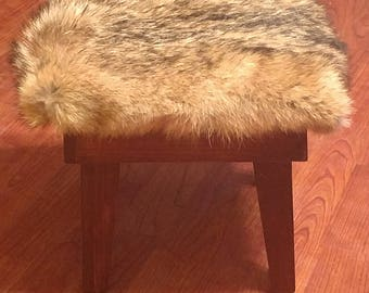 Coyote Fur Stool