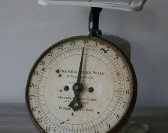 Columbia Family Scale / Vintage Kitchen Scale / Antique Kitchen Scale