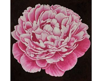 Peony Oil paint on canvas One of Floral Kind Realism Flowers Floral Nature paint Realistic Gift Birthday New home House Beautiful Only one