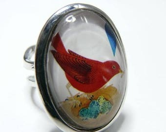 The bird and nest ring