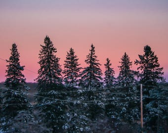 Sunset Photography Winter Snowy Trees Print