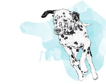 A4 Artist illustration print of a Dalmatian in - A4 artwork SiddyPrint - 'Splash of Spots' print -