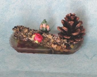 object decorative lichen and Pine Cone
