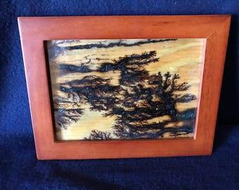 Fractal Wood burning image in 4x6 frame