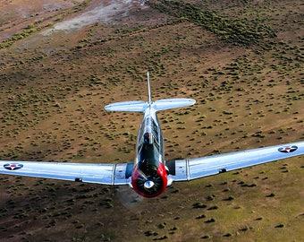 16x24 Metal Print of a T6 Texan Warbird