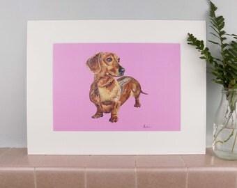 Dachshund on Pink Background Print