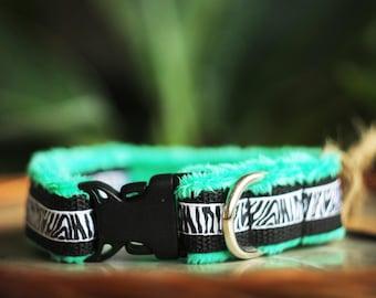 Dog collar Zebra - zebra stripes, animal pattern, animal collar