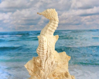 couple seahorses large plaster blank