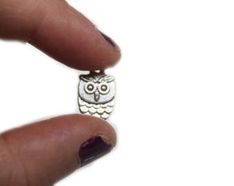 Set of 5 owls charm