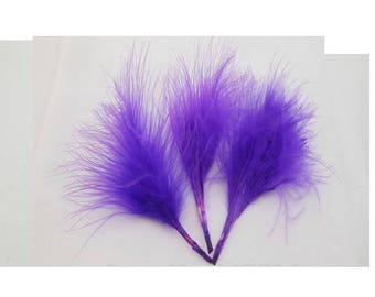 A LOT ABOUT 24 COLOR PURPLE FEATHERS