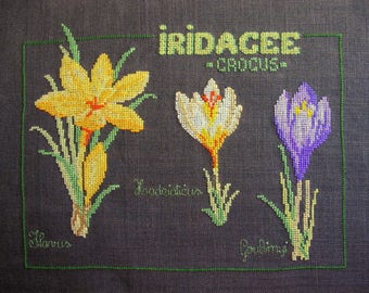 Three Crocuses in cross stitch Embroidery