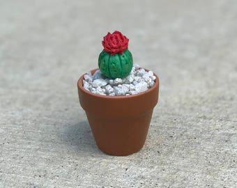 Clay Mini Cactus