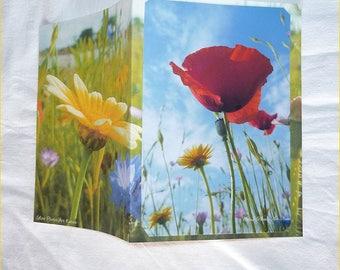 """Carte double """" Fleurs des champs """" 10,5x15cm de Céline Photos Art Nature"""