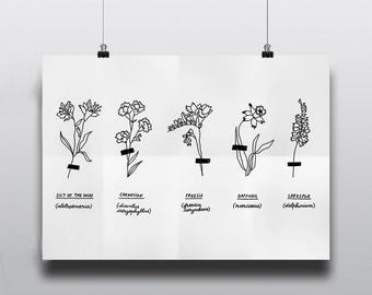 Herbarium | Floral Art | Printable Poster | Digital Art | Wall Decor | Gallery Wall | Wall art