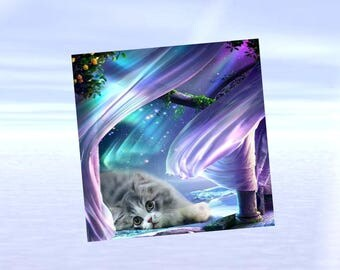 lined, square card with cat: borealis spendeurs