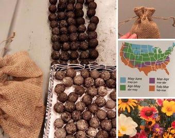 Wildflower Seed Bombs (5)