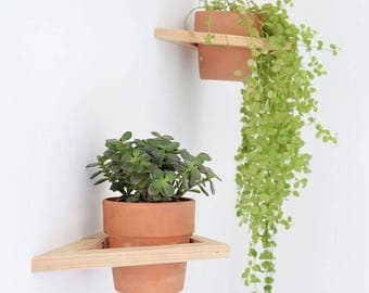 Triangle Plant Holders