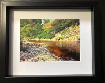 Wall Decor Bighead River Salmon Run: Color Photograph