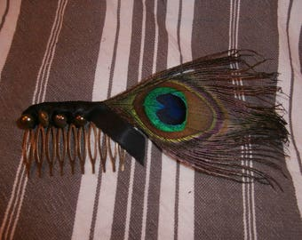 Adorned with a Peacock feather comb