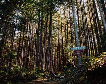 Lone Cone, Canada Travel Photograph, Landscape Print