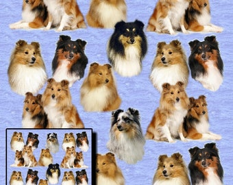 Shetland Sheepdog, Sheltie Dog Gift Wrapping Paper with matching Gift Card.